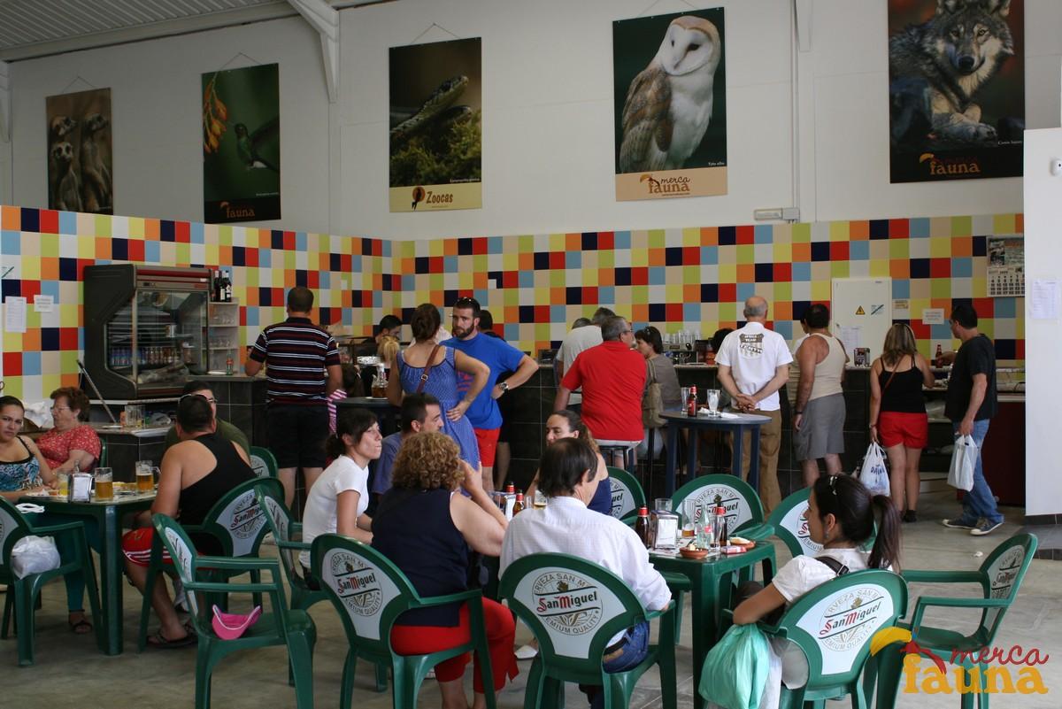 Cafetería de Mercafauna