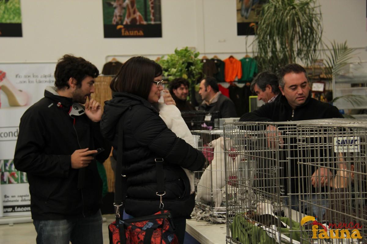 Un criador de perros en Mercafauna