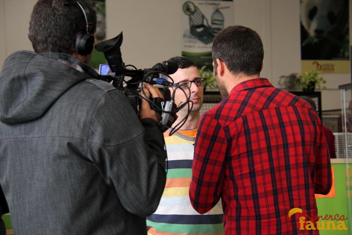 Graban un programa de CanalSur -75 Minutos- en Mercafauna