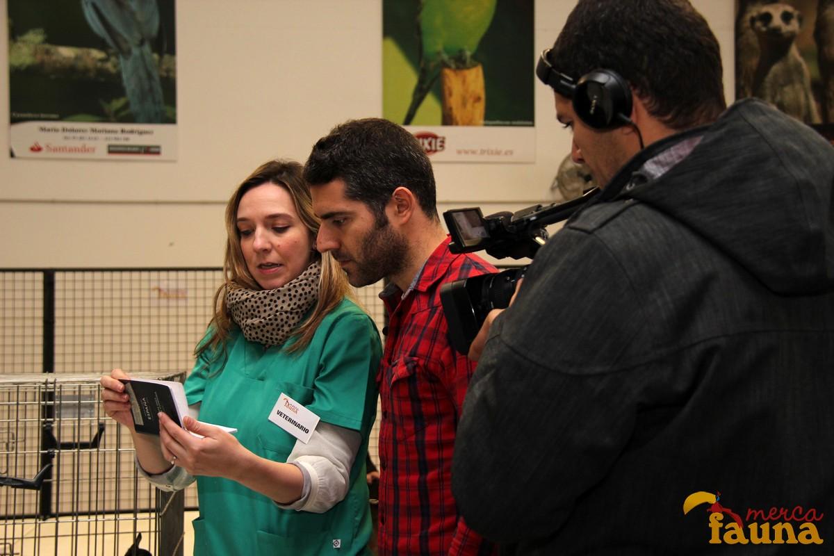 Veterinaria muestra al programa 75 Minutos el control a los animales