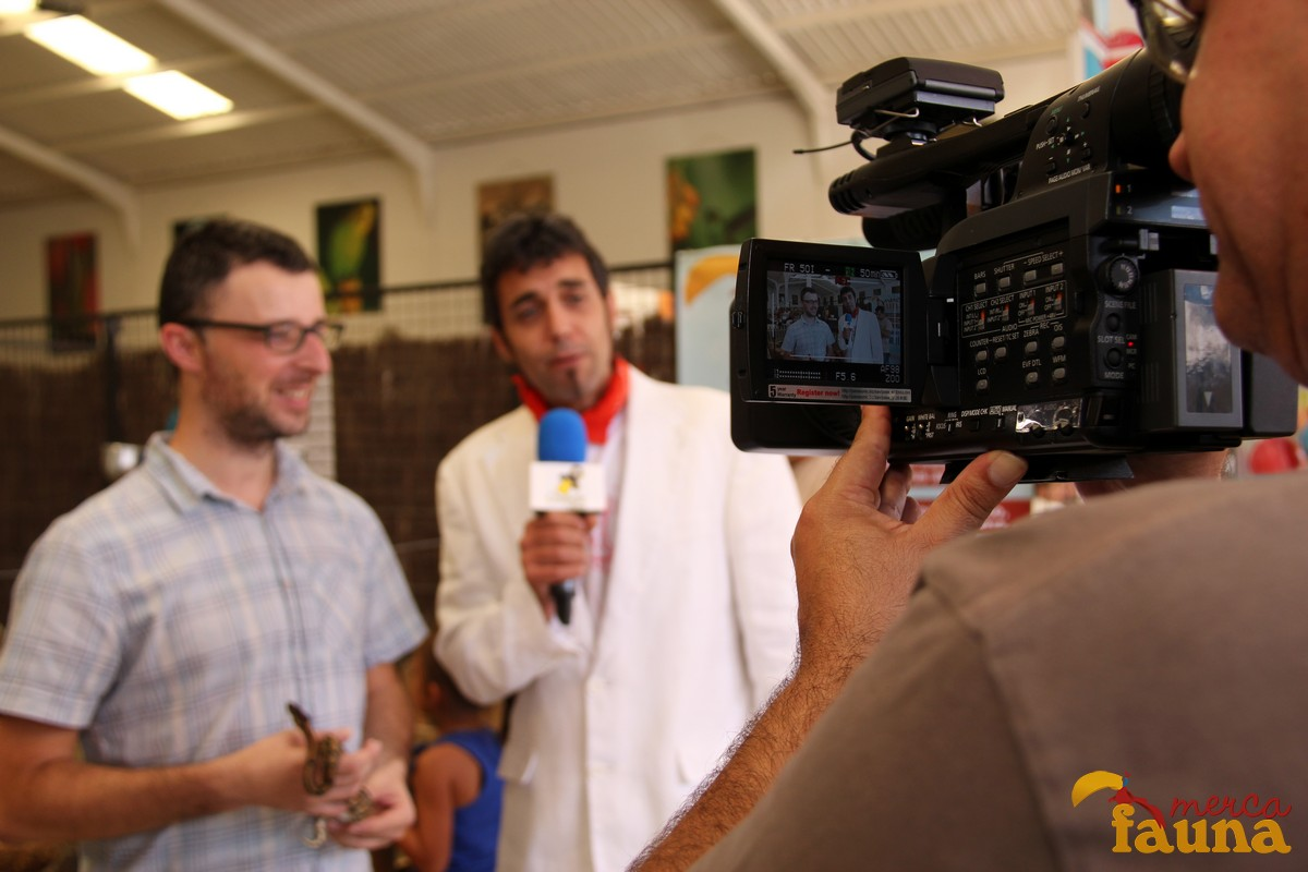 Graban un programa de CanalSur en Mercafauna